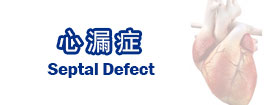 心漏症Septal Defect