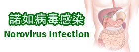 諾如病毒感染Norovirus Infection